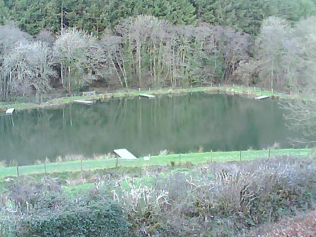 Bellbrook Fishery Webcam